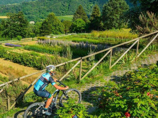 """Presentato a Faenza il progetto """"If Cycling Road & Gravel Bike"""""""