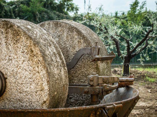 Olive Oil Path in Brisighella